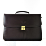 Litigation Briefcase frontdone
